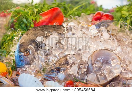Fresh seafood. Fish, herbs and pepper on ice at traditional seafood restaurant in Venice, Italy. Outdoor terrace