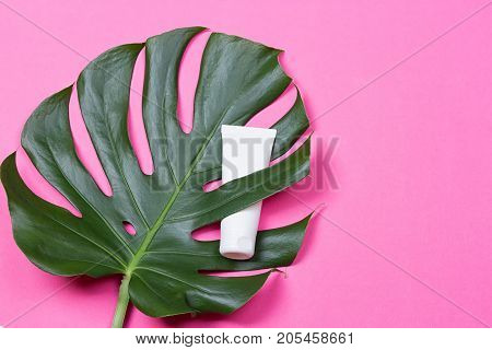 Cosmetic bottle containers with green herbal leaves on the pink background