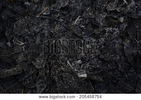 texture of the ashes from the burnt in the fire of the leaves