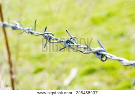 Close-up The Barbwire On The Fence Building