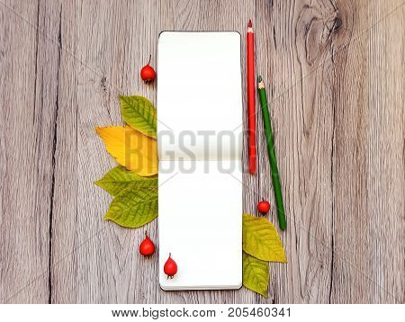 Closeup of sketchbook and colorful pencils. Decorated with autumn yellow leaves and red wild berries on wooden background. Top view flat lay view from above