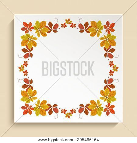 Decorative frame with border ornament of yellow autumn leaves, label, ornate square card for fall season design, vector invitation or announcement template