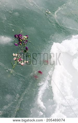 Carnations And Ice. Flowers Thrown Into Sea Water As A Memory Of Those Fallen In The Sea.