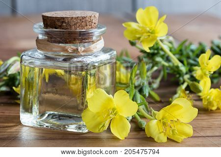 A Bottle Of Evening Primrose Oil With Evening Primrose Flowers