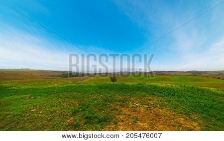 a green field in Tuscany in Italy