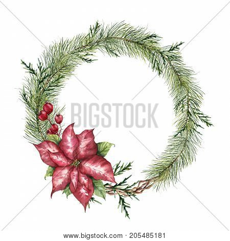 Watercolor Christmas floral wreath. Hand painted Christmas tree branch, poinsettia, eucalyptus, cedar and crabapple isolated on white background. Floral botanical border for design or print