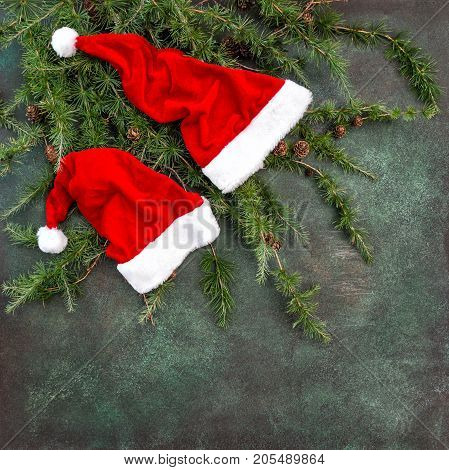 Christmas tree branches with Santa Claus red hat. Holidays background