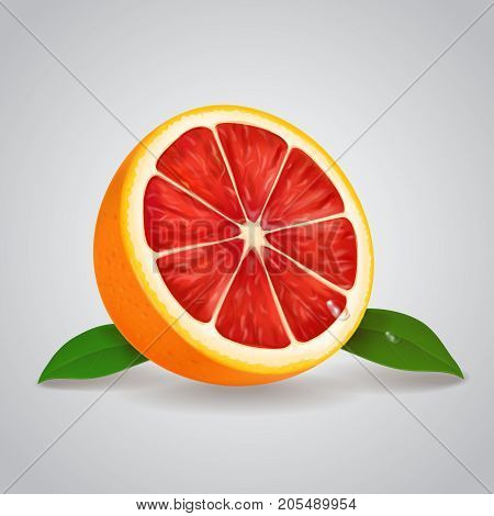 Grapefruit realistic 3d illustration with leaves Vector illustration.