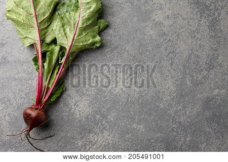 Fresh harvested beetroot on stone background, top view