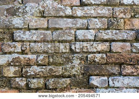 Old dirty brick wall texture background. Wall background for designers.