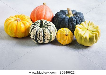 Different pumpkins and gourds on the off white background, copy space for text, selective focus