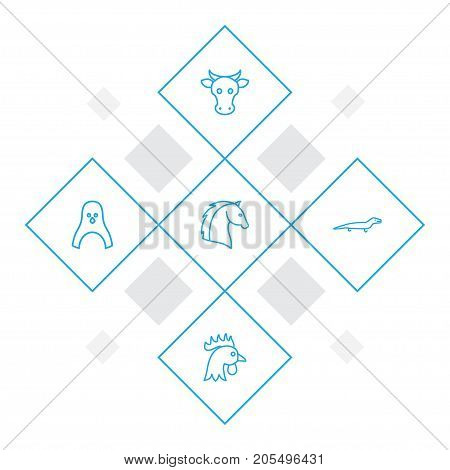 Collection Of Cow, Penguin, Lizard And Other Elements.  Set Of 5 Animal Outline Icons Set.