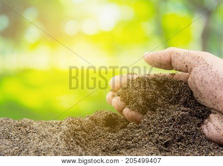 Soil in hand with organic garden - agriculture. Environment concept.