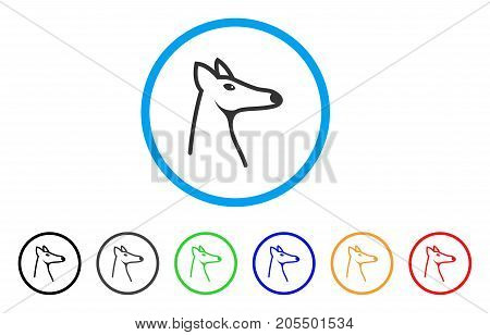 Fox Head rounded icon. Style is a flat fox head gray symbol inside light blue circle with black, gray, green, blue, red, orange versions. Vector designed for web and software interfaces.