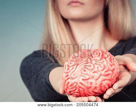 Woman Hand Holding Brain