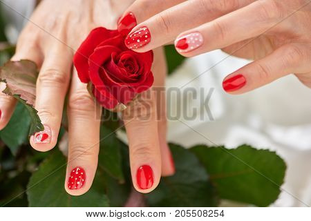 Red rose in gentle female hands. Young woman hands with red designed manicure touching scarlet rose. Female beautiful manicure.