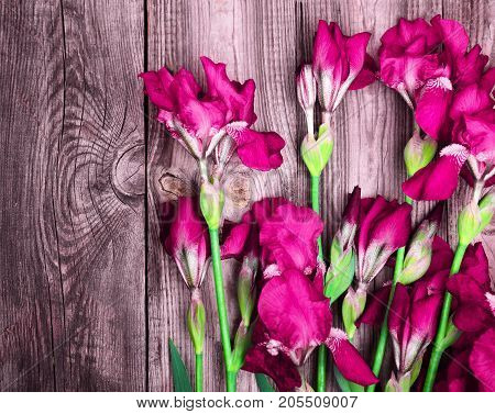 a bouquet of purple irises on a gray wooden background empty space on the left