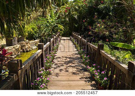 Beautiful wooden bridge in a tropical park