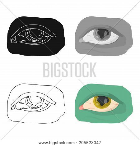 Eye single icon in cartoon style.Eye, vector symbol stock illustration .