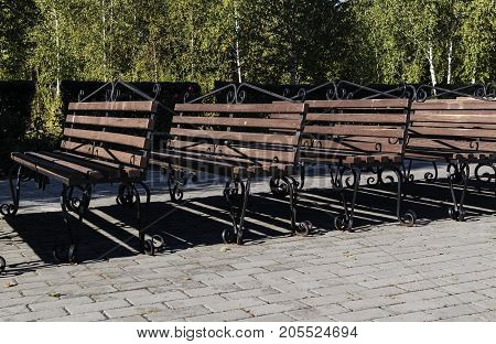 Brown bench. Park bench. Benches in the park.  Park background. Bench background.