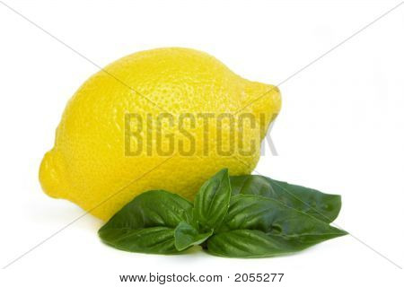 Lemon With Basil