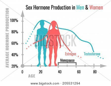 Sex hormone production in men and women. Average percentage from the birth to the age of eighty years. Beautiful vector illustration. Medical infographic useful for educational poster graphic design.