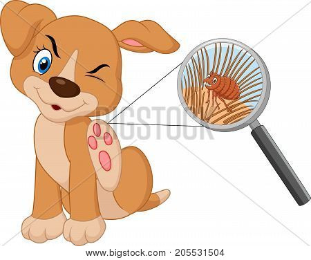 Vector illustration of flea Infested Dog on white background