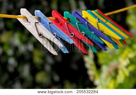Colorful laundry pins hanging on a clothesline. The pegs are made of plastic. In the background are the trees.