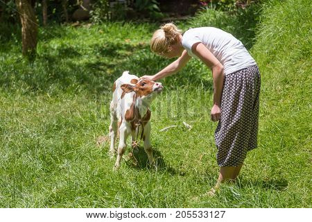 Female farmer caressing cute calf on meadow.