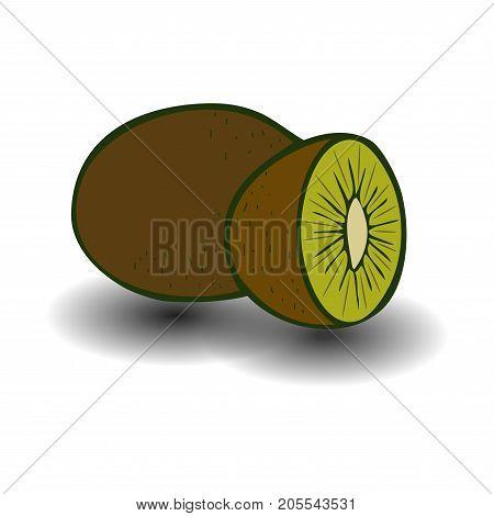 Kiwi fruit vector illustration. Sliced juice kiwi on the white background.