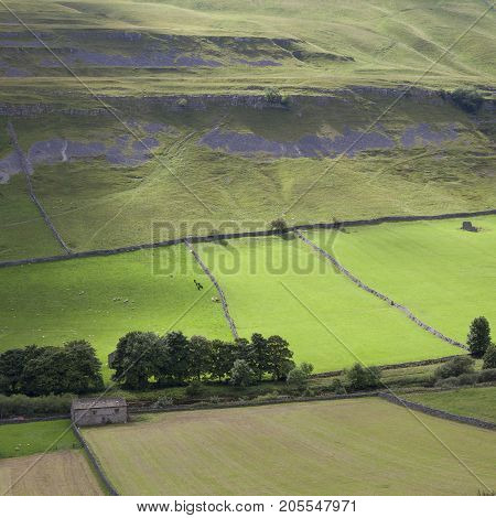 Wharfedale landscape Wharfedale Yorkshire Dales National Park England.