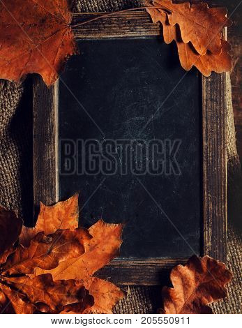 Autumn fall leaves on vintage Empty blank black chalkboard with copyspace. Cozy Autumn Still Life Background. Autumn red and orange leaves