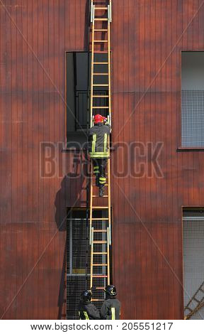 Firefighters During A Ladder Exercise And The Fire Brigade Build