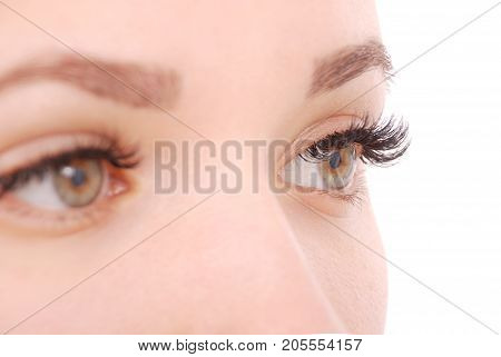 Beautiful woman eyes with long eyelashes. Close up view of grey woman eyes with beautiful brown shades. Studio shot
