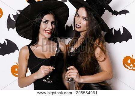 Two sexy witches posing on a white background in black stylish dresses, witch hats and glasses of blood in their hands