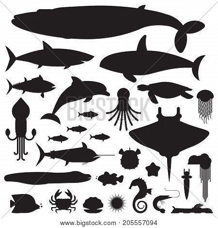 Underwater animals and sea creatures logo or label templates. Ocean and marine fishes and other aquatic life silhouette collection. Blue whale, devilfish, dolphin, orca, octopus, mollusks icons.