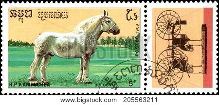 R.P. KAMPUCHEA - CIRCA 1989: A stamp printed in R.P. Kampuchea shows a Bolounais Horse, series breeds of horses