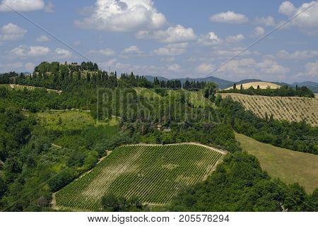 Rural landscape at summer along the road from Brisighella to Modigliana (Ravenna Emilia Romagna Italy)