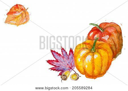Watercolor hand drawn horizontal composition with autumn leaves, pumpkins and acorns, isolated on the white background with place for your text