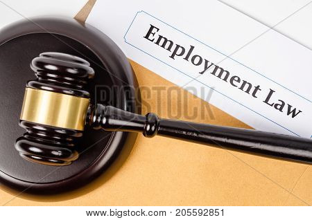 Employment law documet and wooden judge on white background.