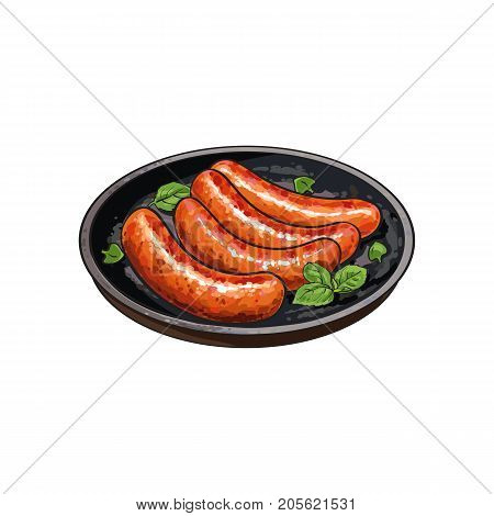 Four freshly grilled, barbequed processed meat sausages on frying pan, sketch vector illustration on white background. Realistic hand drawing of German sausages grilled, fried on skillet, frying pan