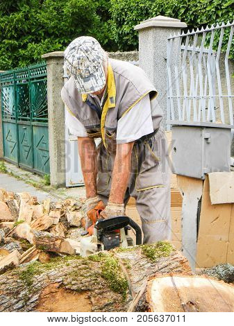 Man cutting big wood with a chainsaw