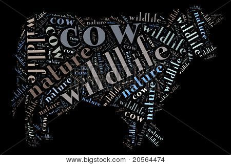Wordcloud of cow
