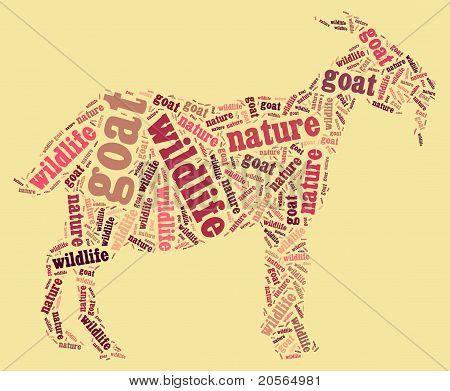 Wordcloud of goat