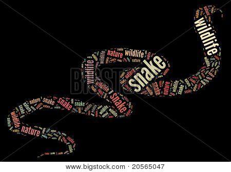 Wordcloud of snake
