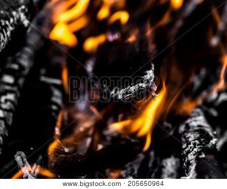 abstract background of burning coals . In the park in nature
