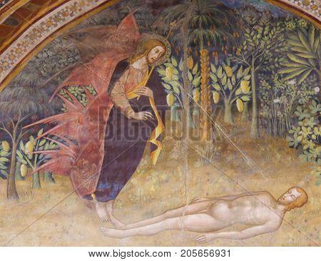 Fresco In San Gimignano - Creation Of Adam