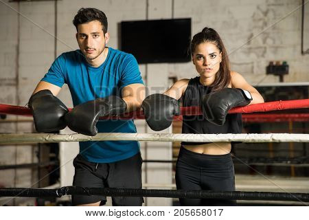 Couple Of Boxers In A Boxing Ring