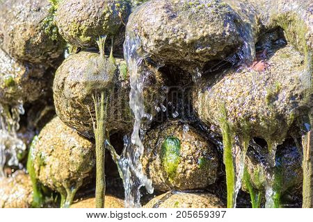 Water and green algae slime running off rocks. Abstract nature image of natural waterfall feature.