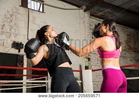 Female Boxer Throwing An Uppercut